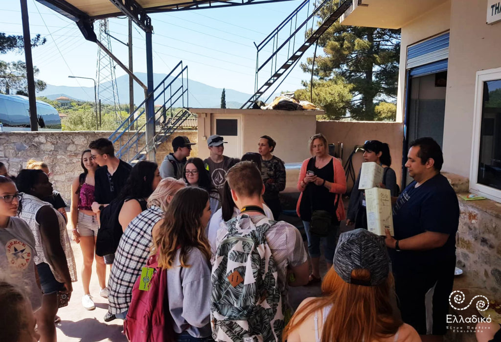 Έξτρα Παρθένο Ελαιόλαδο Ελλαδικό - Επίσκεψη μαθητών από τον Καναδά στο ελαιοτριβείο μας