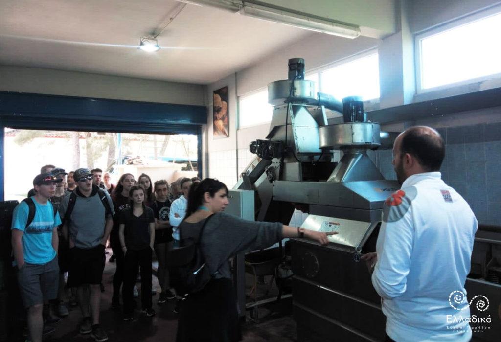 Έξτρα Παρθένο Ελαιόλαδο Ελλαδικό - Επίσκεψη μαθητών από τον Καναδά στο ελαιοτριβείο μας 4